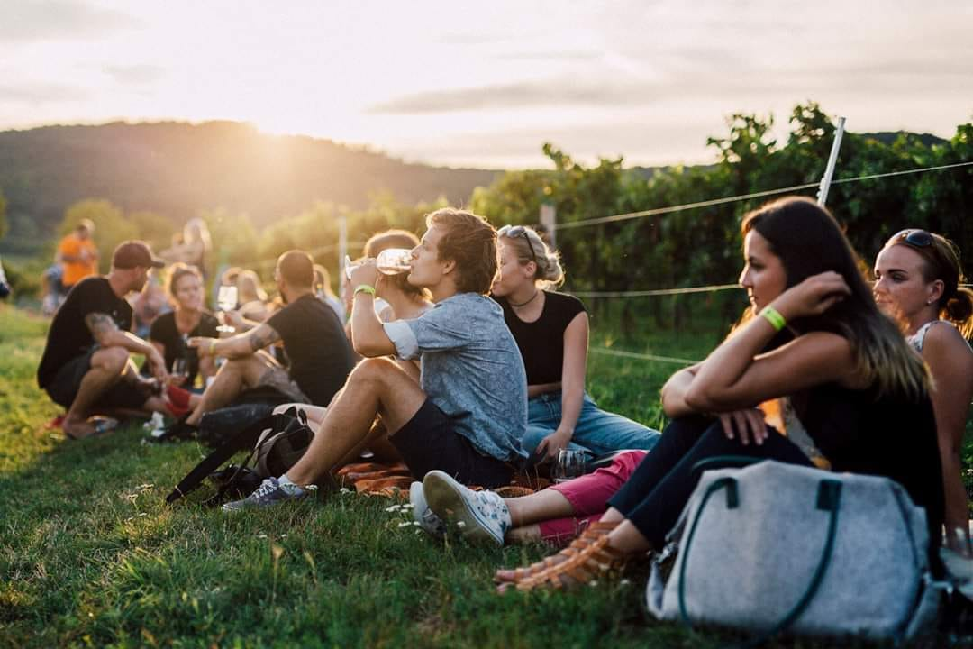 Karpatská muška: Piknik vo vinohradoch 2018